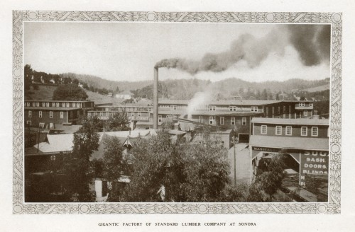 1911 Sonora Lumber Company Plant in Sonora-- near where today's Grocery Outlet now stands.